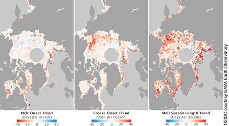 Ez a térkép azt mutatja, hogy az Északi-sarkvidéken hogyan alakult ki az olvadás (balra), később hogyan kezdődött (középen), és hogyan lett az olvadás hosszan tartó (jobbra) – az elmúlt 30 év adatai alapján. Kép: NASA Earth Observatory