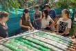 Napkollektor házilag, üdítő dobozokból – VIDEÓ