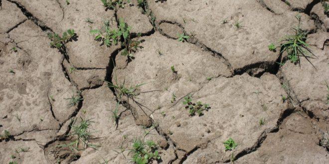 A világ természetvédelmi területeinek egyharmadát veszélyezteti az ember