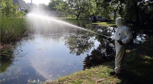 Szúnyoghelyzet: Ezeken a területeken folytatódik a szúnyogirtás