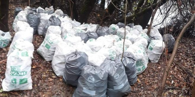 1000 zsák szemétnél tart a Tisza-tó önkéntes takarítója