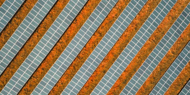 Rohamosan esik a napelem modulok ára