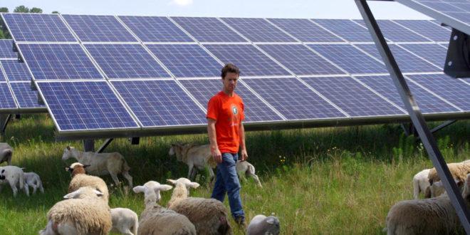 Maradnak a magas vámok a kínai napelemekre