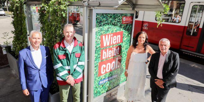 Kizöldítik a busz- és villamosvárókat Bécsben