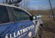 30 kutyatetemet találtak Hajdúsámsonnál, a rendőrség nyomoz