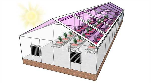 Mi is az a szerves napelem?