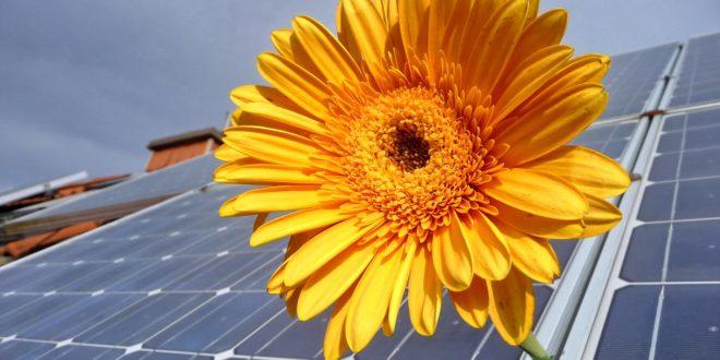 Mi történik a napelem által megtermelt felesleges árammal?